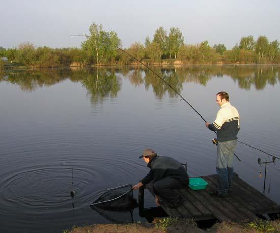 Сообщите нам о рыбах обитающих в окрестностях города Ногинск